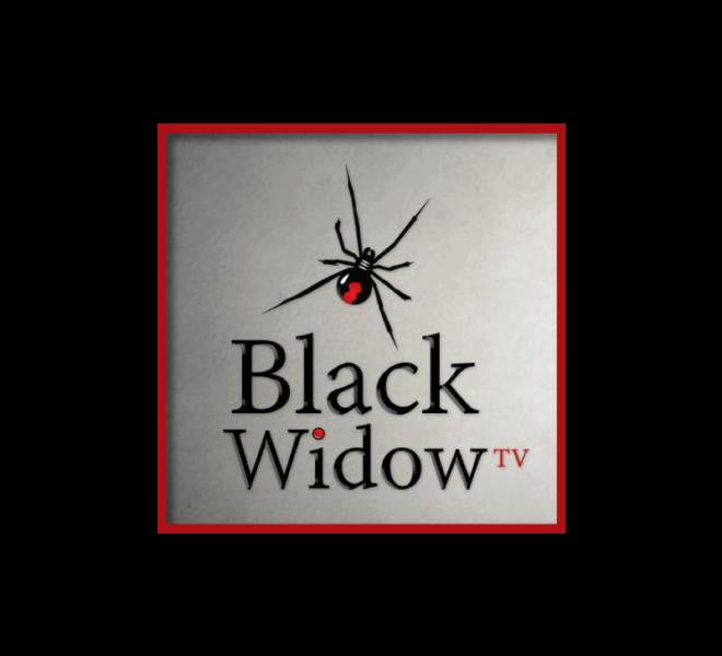Logo - Black Widow Network